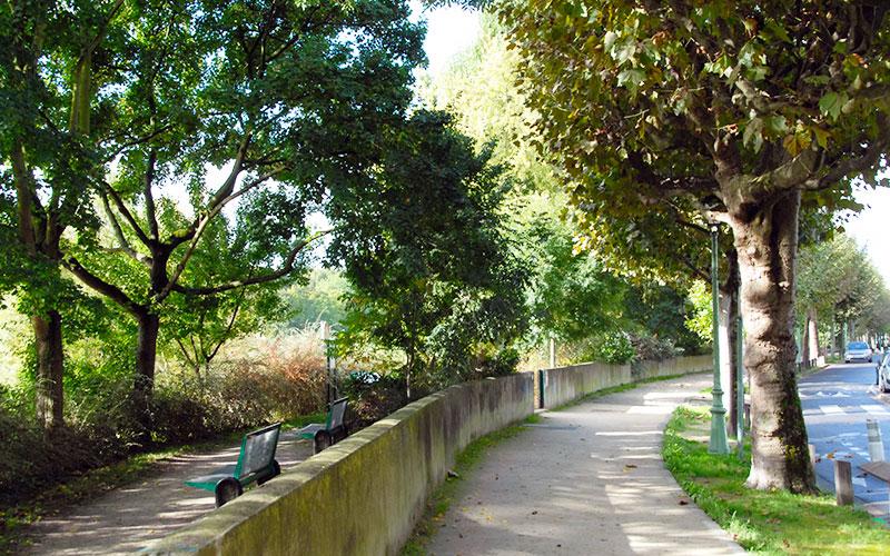Chemin de promenade en bords de Marne à Champigny-sur-Marne