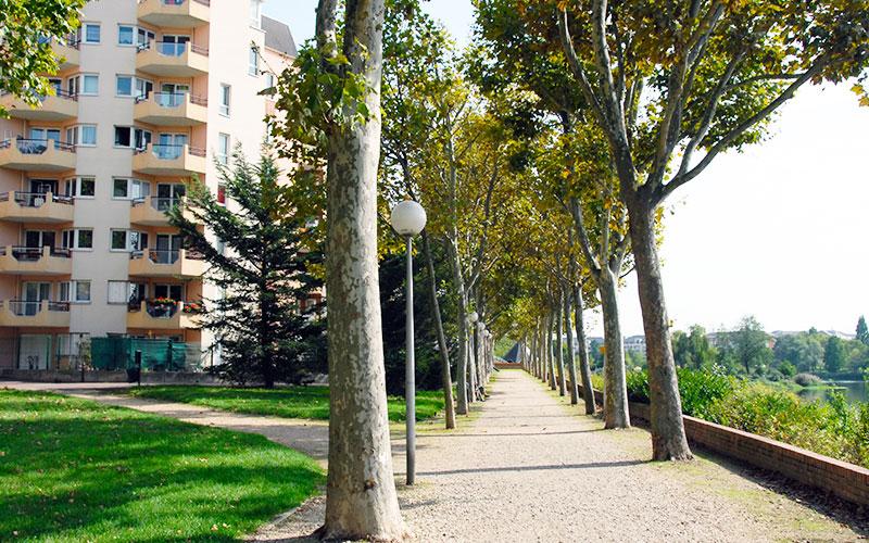 Promenade sur les bords de Marne à Créteil